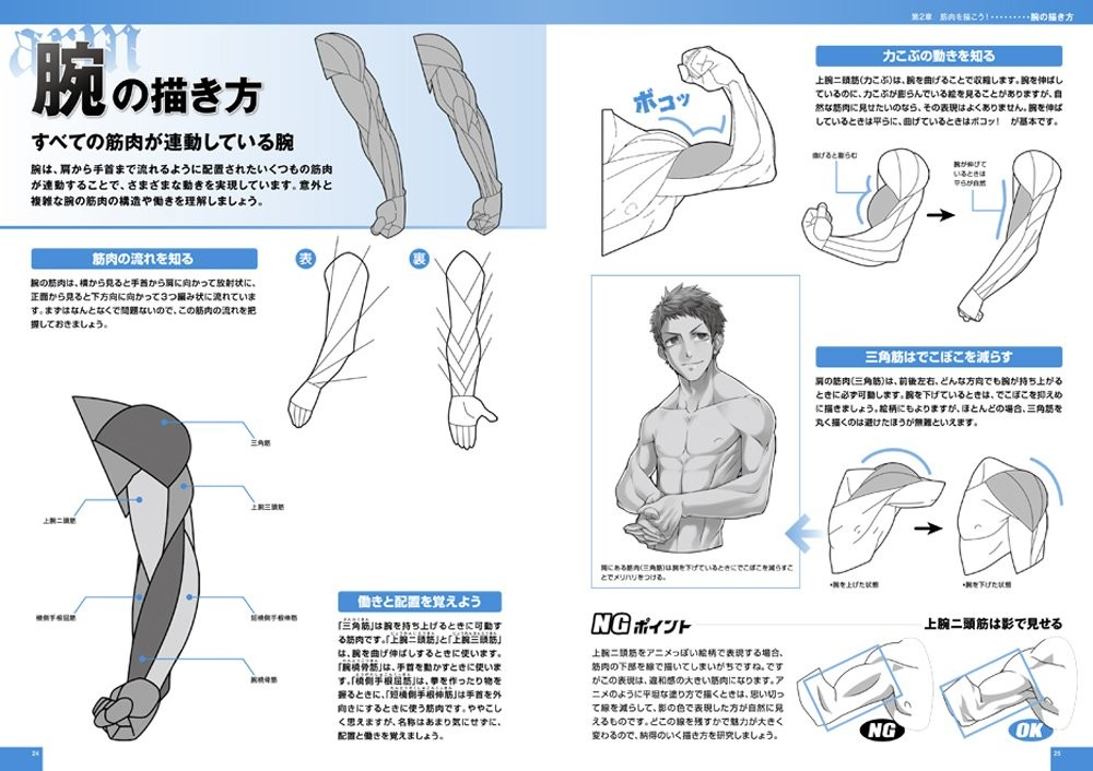 Used How To Draw Mens Guys Body Muscles Japan Art Anime