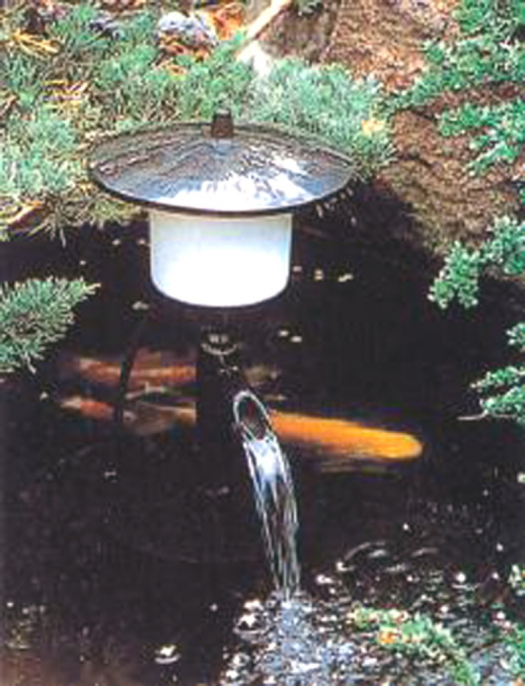 To clean the water garden pond koi pond all in one filter for Koi pool water gardens cleveleys