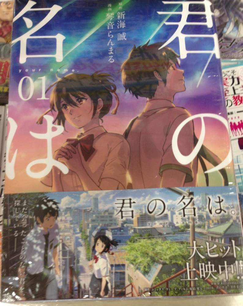 Image result for Kimi No Nawa comics